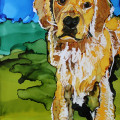 Golden Retriever Day 25 of 30 paintings in 30 Days